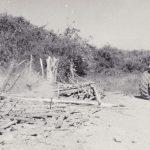 Alto Alegre 1981. Il trattore della Funai dopo la demolizione